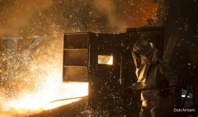 China akan bangun pabrik feronikel di Sulawesi