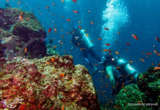 Jepara regency offers new diving spot at Panjang