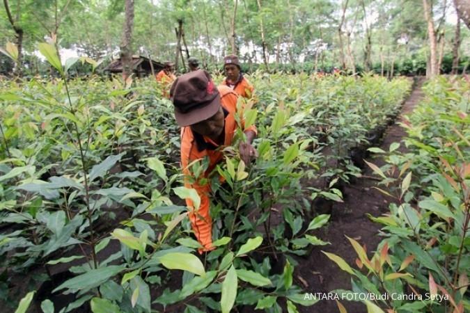 RPN desak peremajaan perkebunan nasional