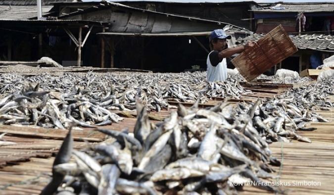 Perinus akan pakai dana PMN dongkrak produksi ikan