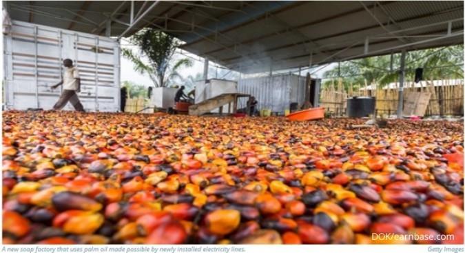 Ke Nigeria, Menlu jajaki kerja sama bisnis sawit