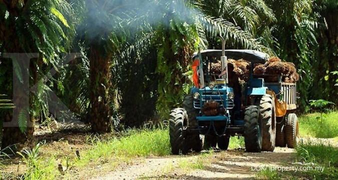 Indonesia siap pasokan 8 juta ton CPO ke Eropa