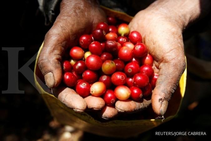 Sediakan Rp 900.000 untuk minum secangkir kopi ini