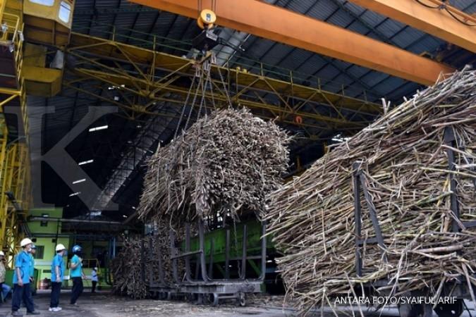 Gendhis Multi target produksi gula 50.000 ton
