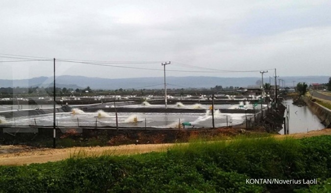 CPRO Proyeksi ekspor udang CP Prima 15% dari pendapatan