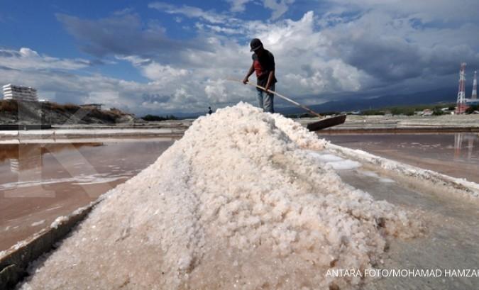 Stok menipis, harga garam rakyat melonjak