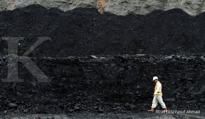 BRAU Kapasitas PLTU Lati bertambah, Berau Coal tingkatkan pasokan batubara gratis