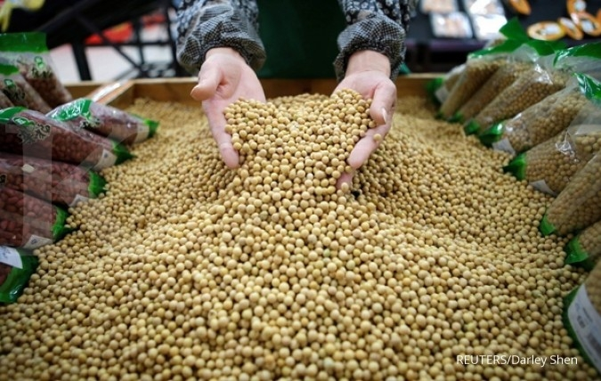 China's Dec soybean imports surge on year as cargoes clear customs