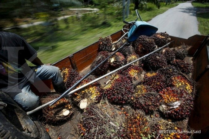 Indonesia able to supply 8 juta palm oil to Europe