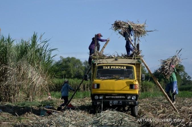 Ini alasan petani gula tebu keberatan soal PPN