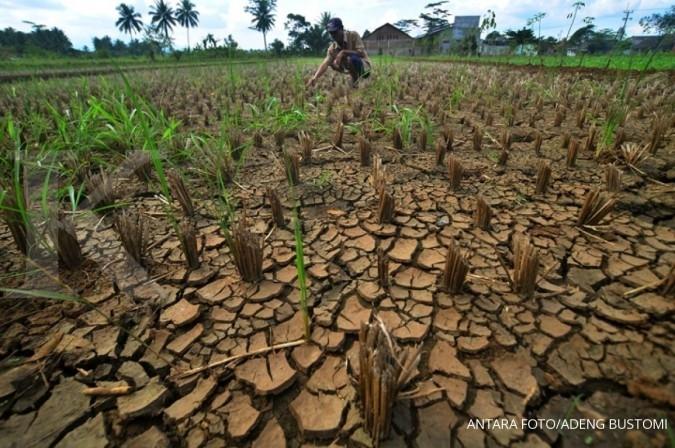 Kekeringan melanda 25 desa di Bangkalan