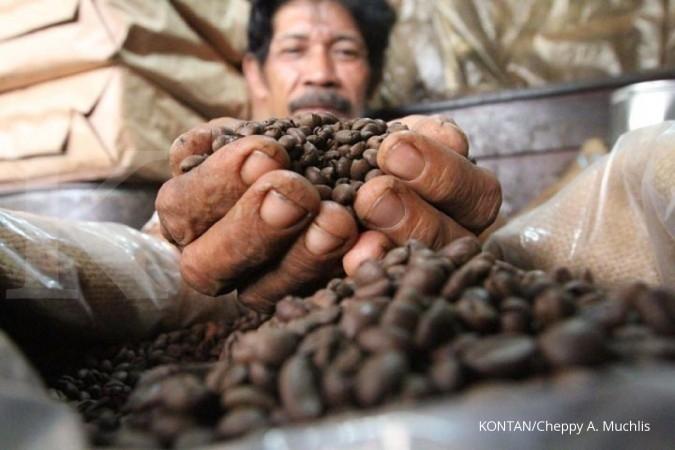 Konsumsi kopi spesial meningkat 10%