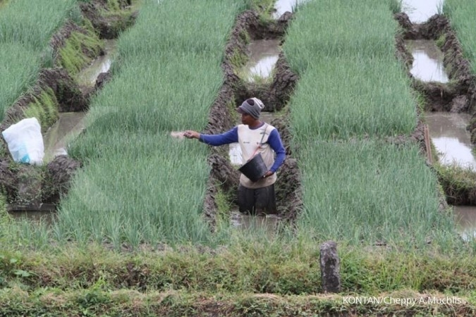 Luas Lahan Pertanian Indonesia Masih Minim