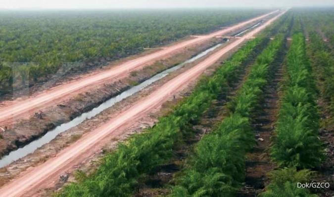 Gozco Plantations (GZCO) jual Golden Blossom senilai Rp 247 miliar, ini alasannya