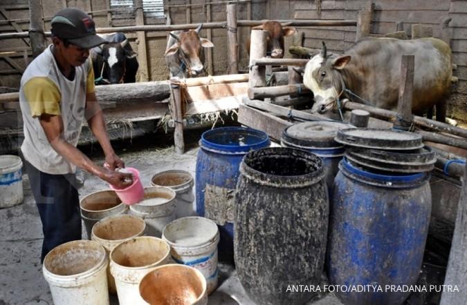 Ini permintaan Dirjen PKH ke peternak Banda Aceh