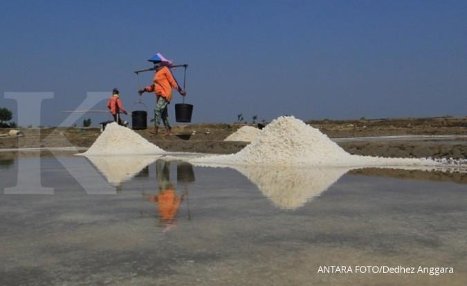 PT Garam hasilkan 43.000 ton garam