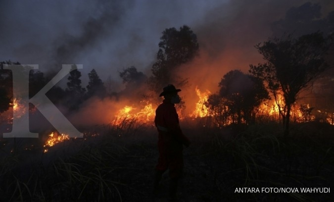 Negara diminta tanggung kebakaran hutan konservasi