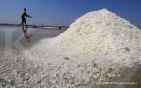 HMPG prediksi produksi garam 2,5 juta ton