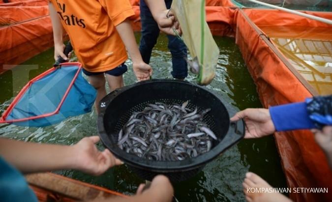 2.004 petani ikan akan dilindungi asuransi