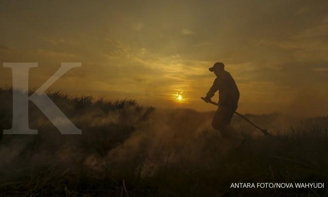 Ratusan hektar lahan di Jambi terbakar