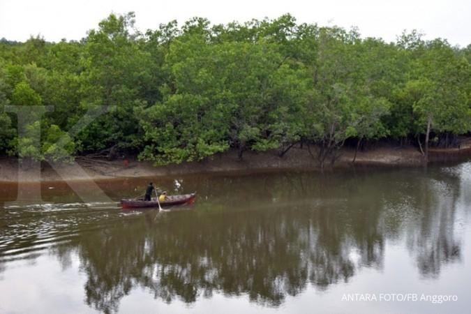 Perbaikan mangrove ditargetkan rampung di 2045