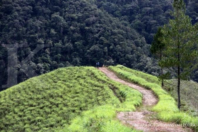 Sulteng rehabilitasi 7.000 Ha hutan lahan krisis