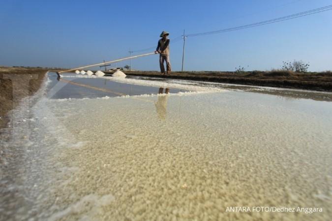 Garam impor distribusi rawan disalahgunakan