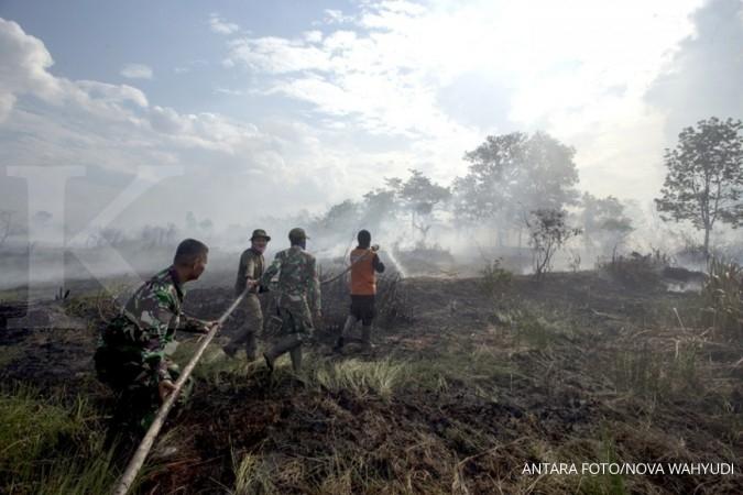Perlu pengawasan membuka lahan lewat membakar