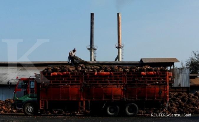 CPO Malaysia: Stok Berkurang, China Menggoyang India