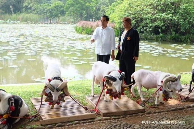 20 domba Garut ikut Karnaval Kemerdekaan Bandung