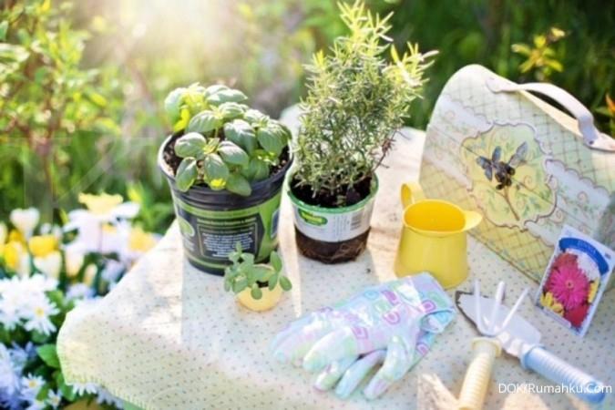 Tips membuat taman sederhana di halaman rumah