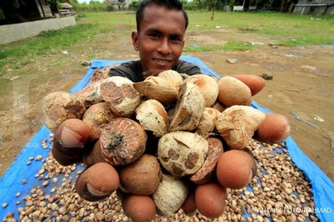 Jokowi ingin petani juga berbisnis
