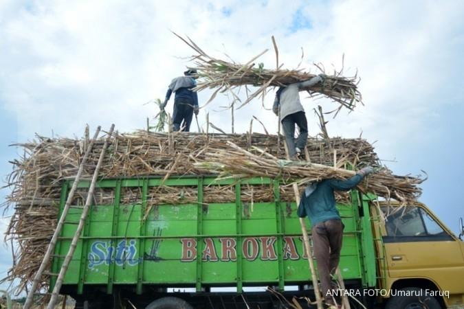 Pertamina dan PTPN XI kucurkan dana ke petani tebu