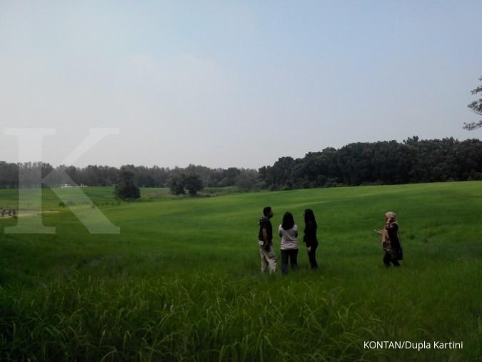 Terhipnotis padang rumput dan hutan di Taiwan (2)