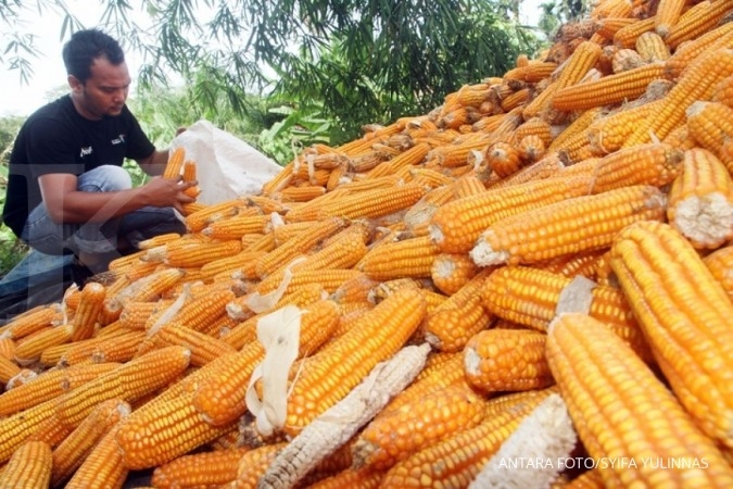 Larangan impor jagung tak berimbas ke Cargill