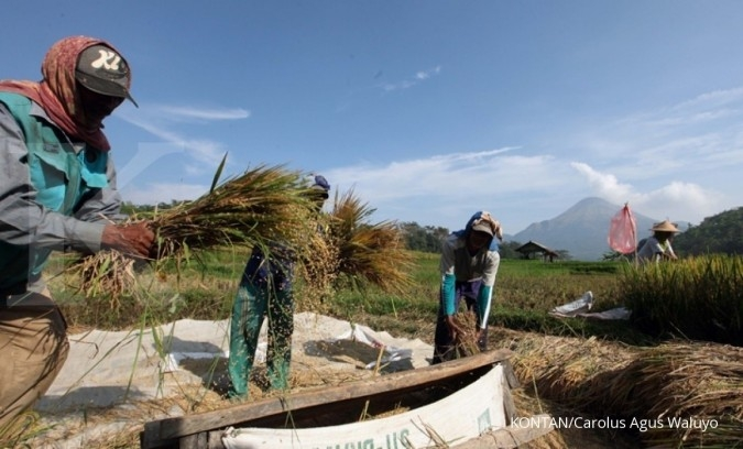 Kementerian Pertanian: Pasokan pangan aman