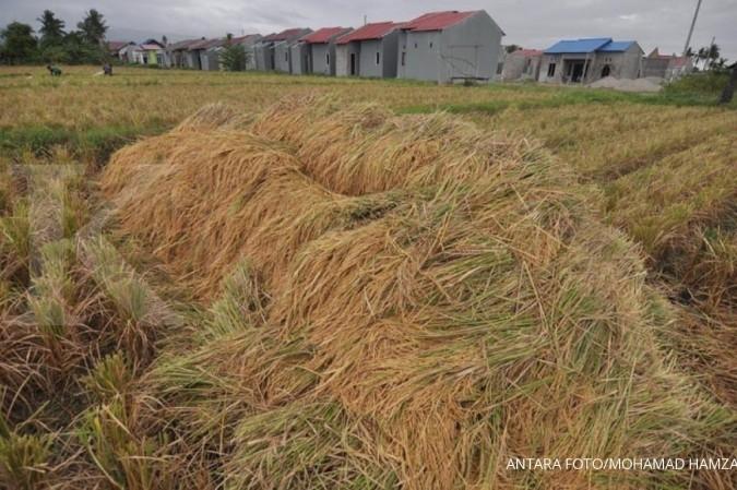 Pemerintah dorong pertanian jadi penggerak ekonomi