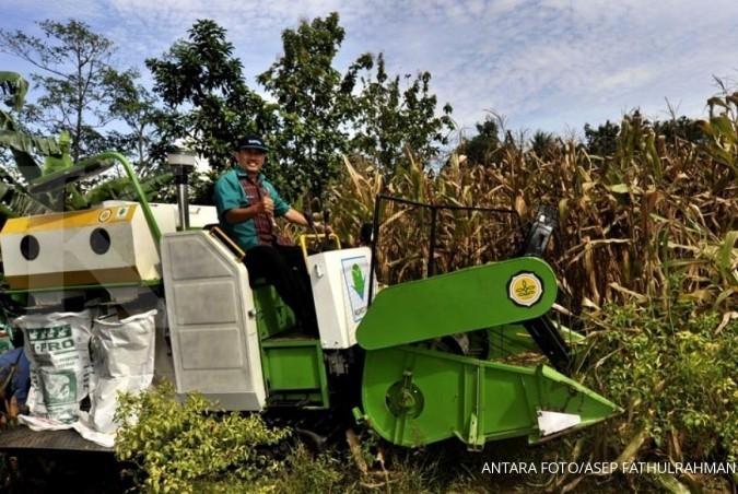 Petani jagung kritik impor gandung