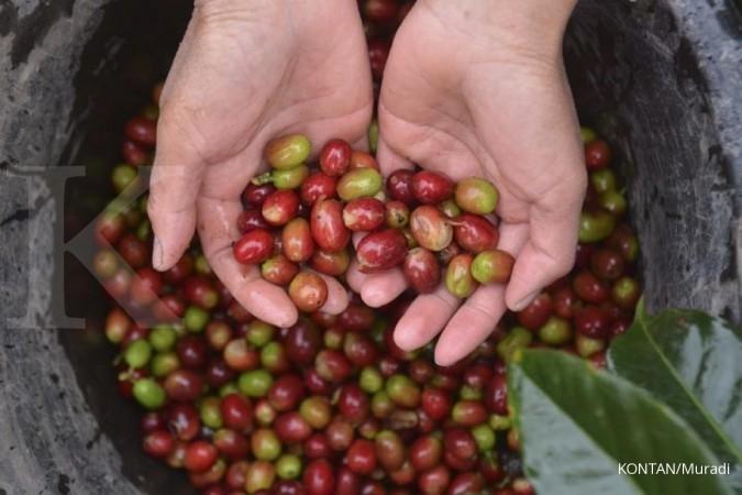 Koperasi kopi raih transaksi miliaran di Korsel