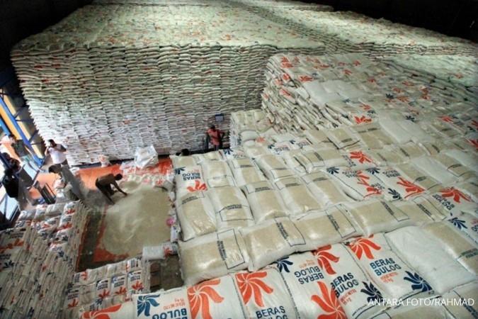 Ini alasan pemerintahan Jokowi impor 500.000 ton beras