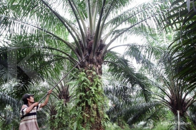 Dubes Jerman dukung Indonesian Sustainable Palm Oil System