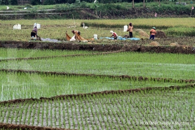 Laju Pdb Tertahan Sektor Pertanian