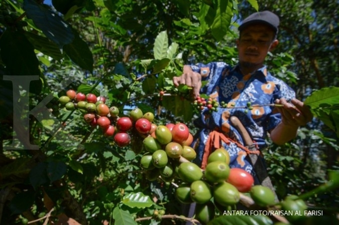 Ekspor Pertanian Menurun Pengamat Nilai Tiga Hal Ini Jadi Penyebabnya