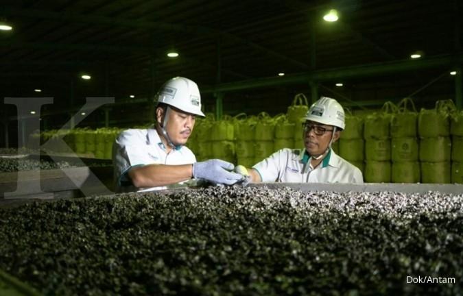 ANTM targetkan smelter di Mempawah beroperasi tahun 2021