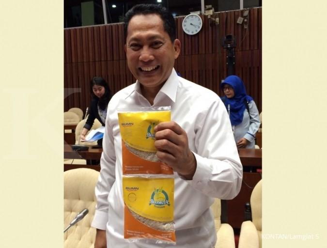 Budi Waseso tegaskan tak ada impor beras tambahan