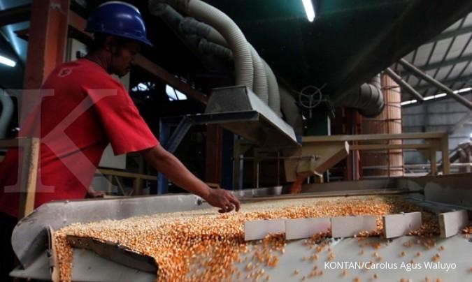 Bisi International (BISI) pasang target ekspor 1.000 ton tahun ini