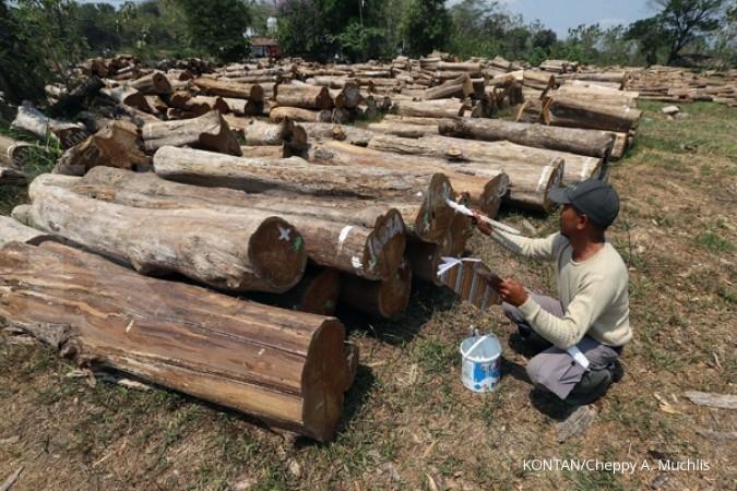 TIRT Ekspor produk kayu Indonesia terus meningkat