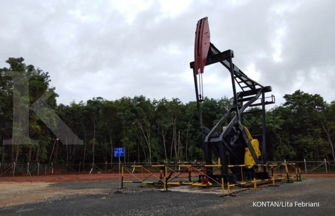 Pertamina aims to drill 300 wells this year