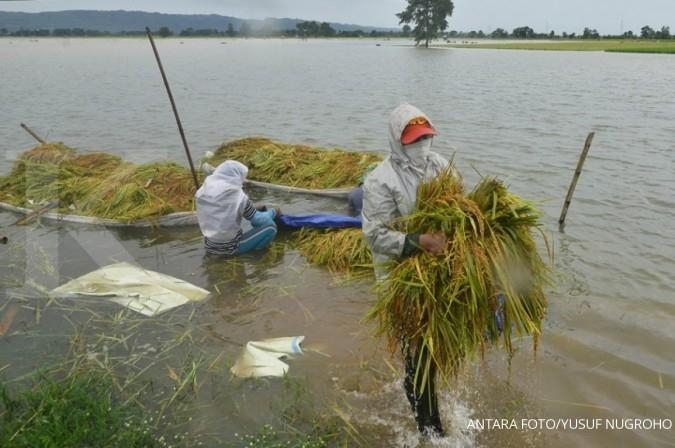 Banjir di Kabupaten Cilacap meluas, sebanyak 7.949 jiwa terdampak