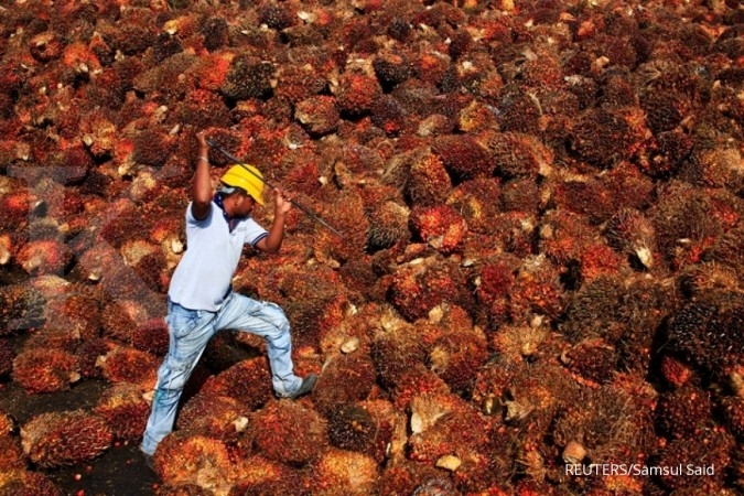 SGRO Pelaku industri sawit optimis harga CPO memiliki tren positif di tahun 2020